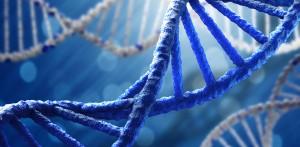 tk54gr5t 1503568830 300x147 YENİ NESİL BİLGİSAYAR: DNA