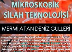 BİLİM PANOSU